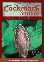 картинка: cockroach_studies_1.jpg