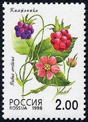 Количество марок на листах:50(10х5 марок).  Художник: О.Зобнина.