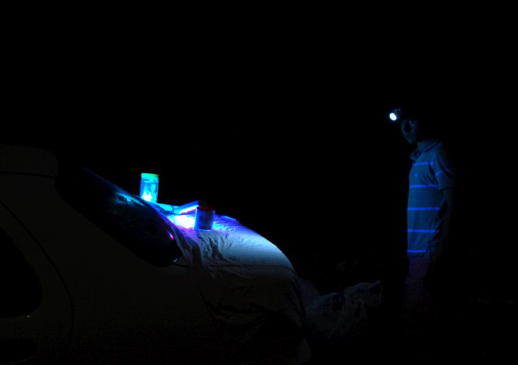 картинка: UV.jpg