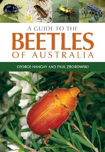 картинка: Beetles_of_Australia.JPG