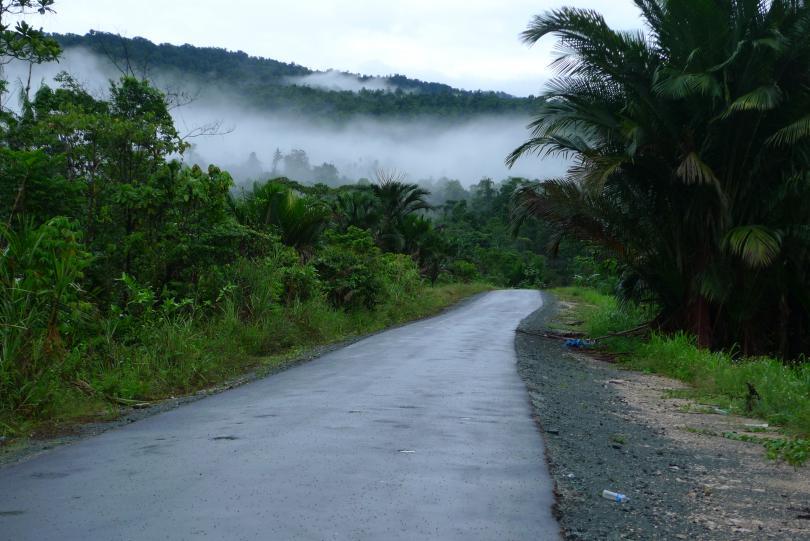 Новая_Гвинея_327.jpg - кликните, чтобы открыть увеличенную картинку