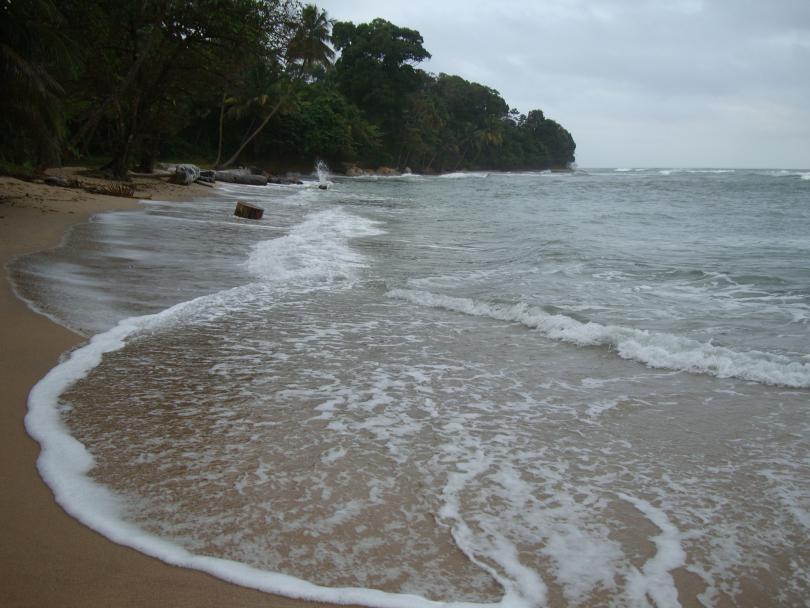 Gabon__2011__375_.JPG - кликните, чтобы открыть увеличенную картинку