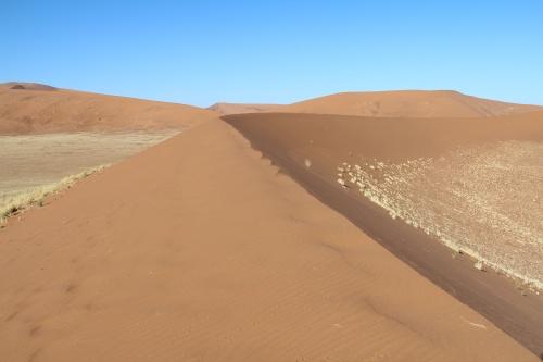 картинка: dunes_morning.jpg