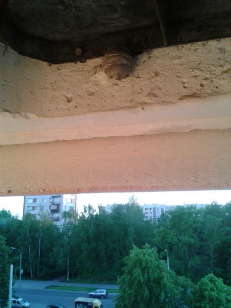 2012_06_13_22.41.56.jpg - кликните, чтобы открыть увеличенную картинку