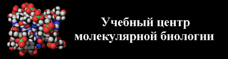 картинка: mbec_ru1.jpg