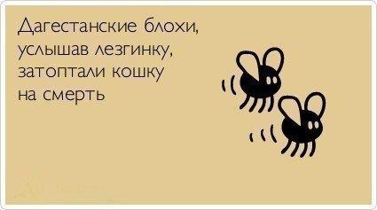 картинка: iQqkQLb_4pM.jpg