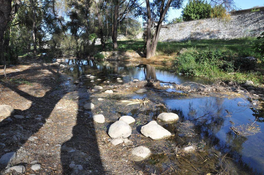 картинка: river.jpg