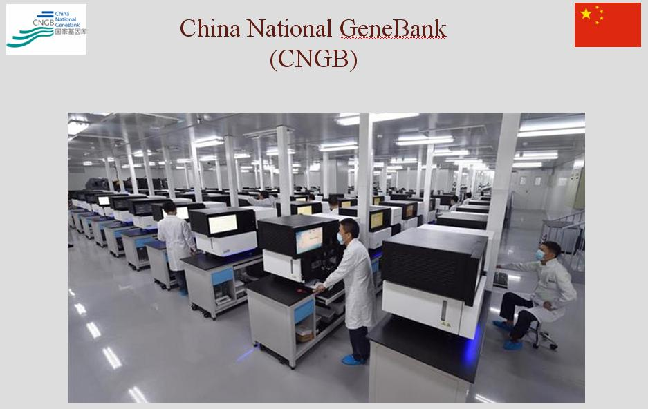 картинка: China_GeneBank.JPG