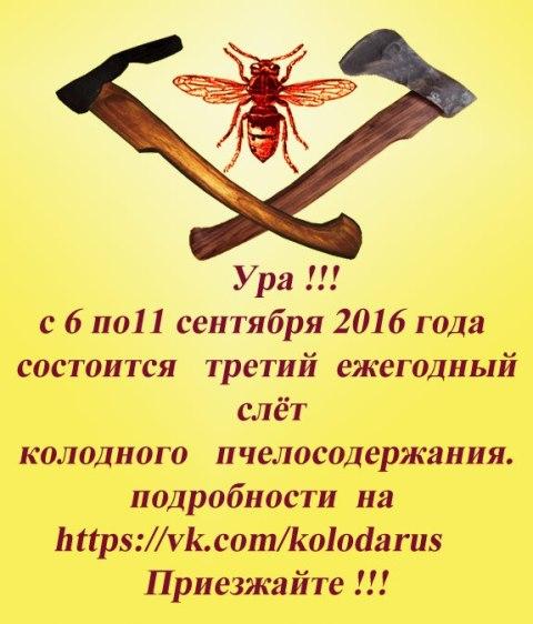 картинка: BvJ7FTH0myM.jpg