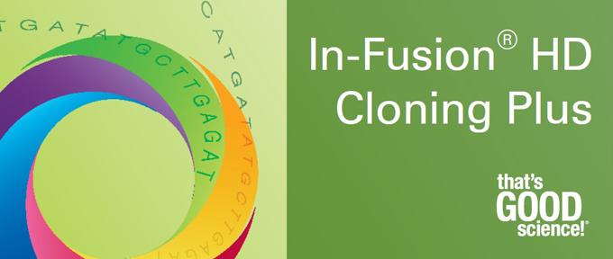 картинка: infusion_cloning_Axiomabio.com.jpg