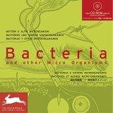 картинка: Bacteria_And_Other_Micro_Organisms.jpg