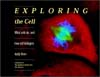 картинка: Exploring_the_Cell.jpg